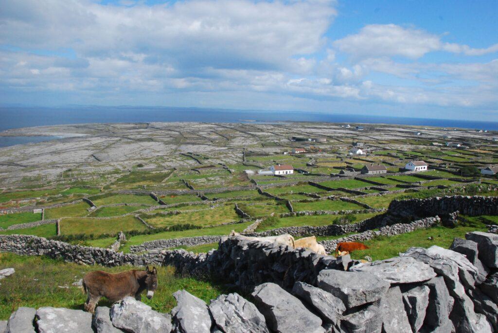 Le paysage d'Inis Mean