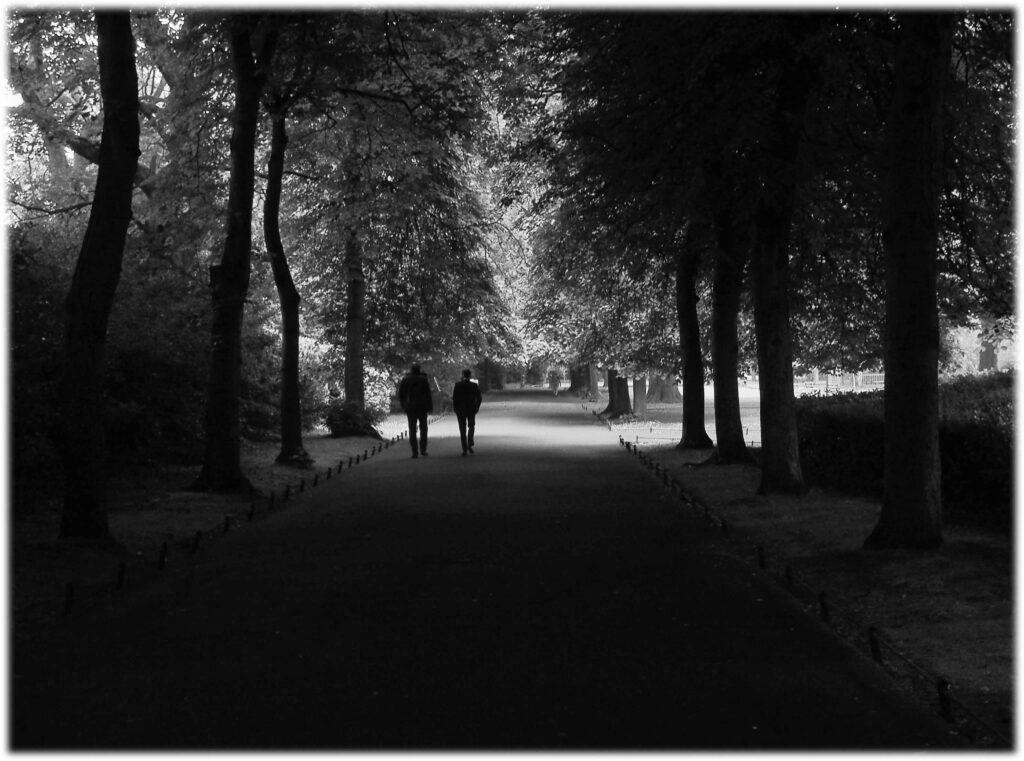 Les promeneurs de Dubin