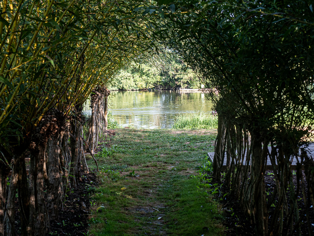 Depuis une île accessible pendant le festival des hortillonnages d'Amiens