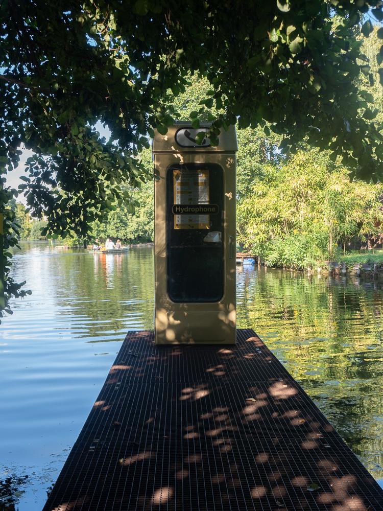 Le téléphone sonne au festival des jardins et hortillonnages d'Amiens