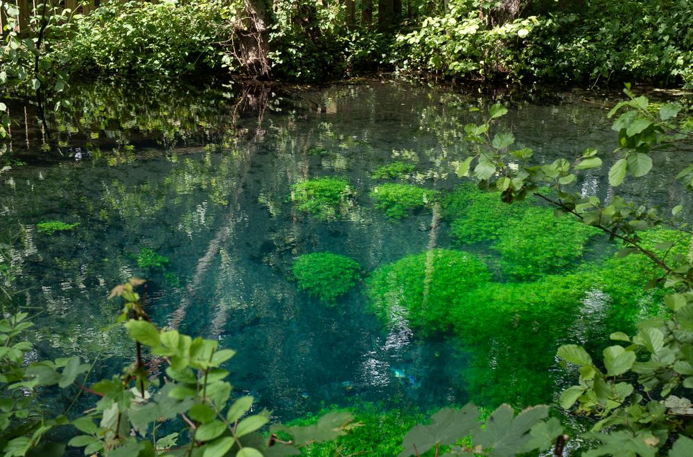 Les sources bleues Dans le parc de la bouvaque à Abbeville
