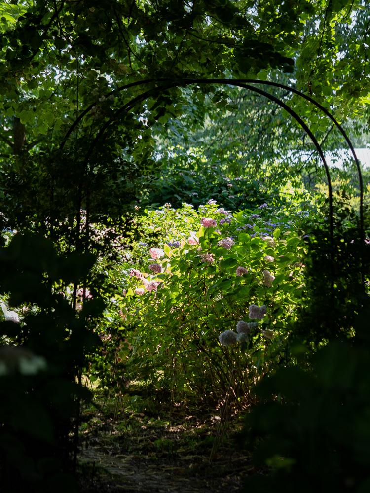 Dans les jardins du château flore