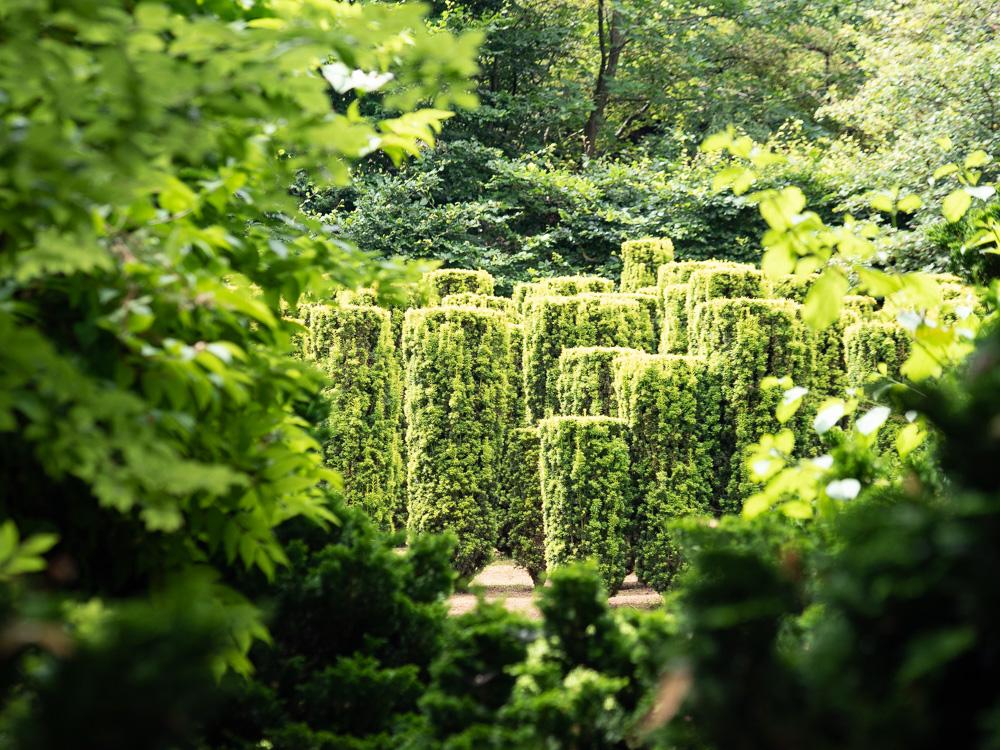 Les soldats du jardin de Séricourt