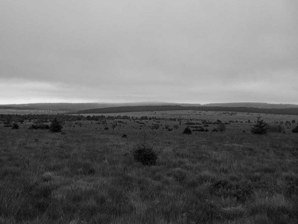 Le paysages des Hautes Fagnes